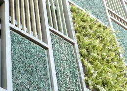 Haus mit grüner Fasade,Fasadenbegrünung
